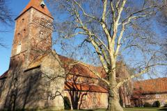 WH Alexander church